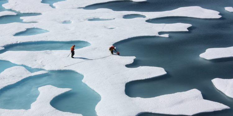 rtęć arktyka