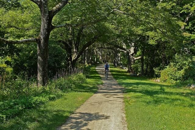 podgrzewana ścieżka rowerowa. fot smilla4/Flickr