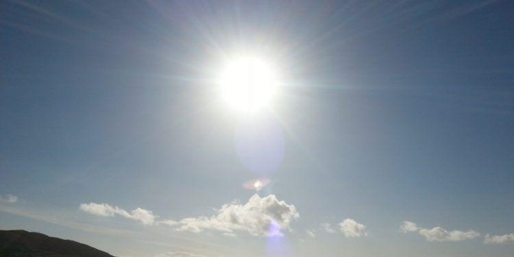 Ozon. Bluebells 2008