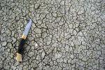 Zmiana Klimatu. Fot Manon