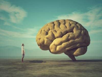 Dlaczego ludzie są ślepi na problem klimatu Zdaniem psychologów winne są nasze mózgi