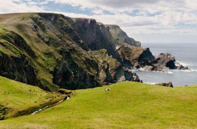 PRZEPISYWANIE NATURY Natura lekarstwem Szkoccy lekarze mogą ją przepisać pacjentom PRZEPISYWANIE NATURY