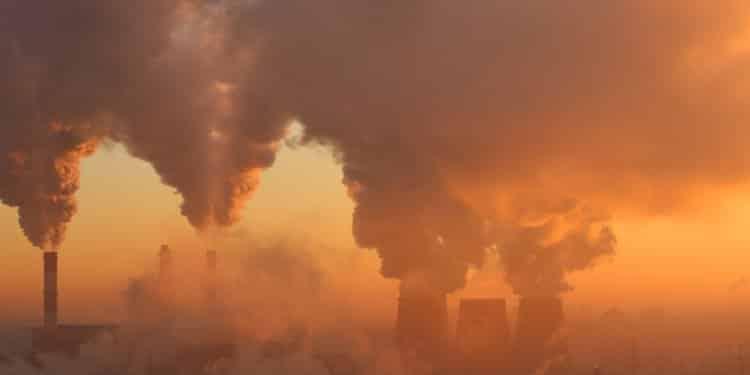 Raport ONZ Zagrożone są środowiskowe podstawy naszego istnienia. Wciąż jednak nie jest za późno
