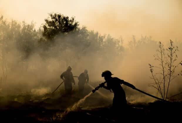 III stopień zagrożenia pożarowego. Ogień strawił 15 ha Puszczy Kampinoskiej