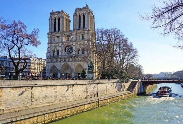 Odbudowa Notre-Dame We Francji nie ma już odpowiednio dużych dębów. Drewno przypłynie z Kanady