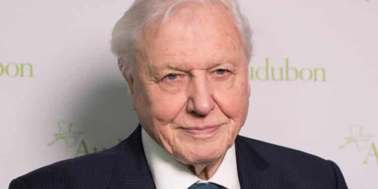 climate change the facts efekt attenborough plastik wielka brytania