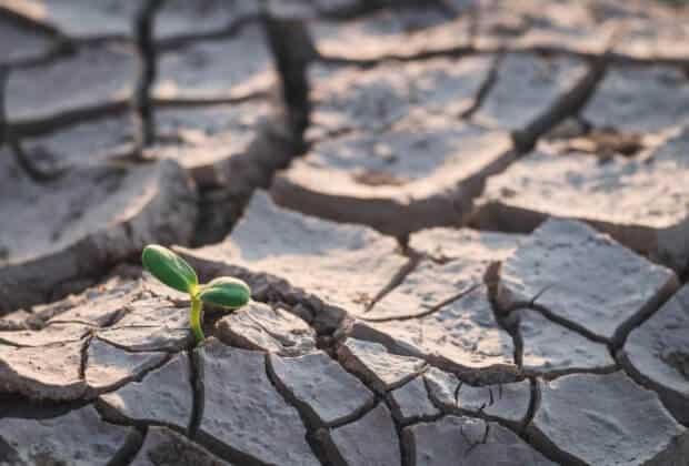 Prof profesor Romanowicz Lokalne deszcze, nawet gwałtowne, nie są w stanie zwiększyć zasobów wody w całym kraju