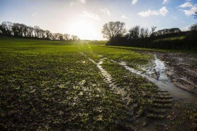 Upały i ulewy. Ekstrema klimatyczne odpowiedzialne za 18-43 proc. strat w plonach na świecie