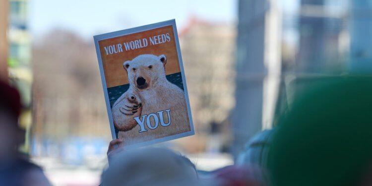 Nowy rząd Finlandii wyznaczył cel neutralność dla klimatu do 2035 roku