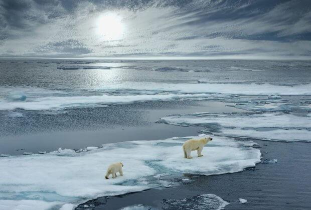 Film Attenborough o klimacie już w języku polskim. Premiera 29.07 w BBC Earth Polska godz. 21.55