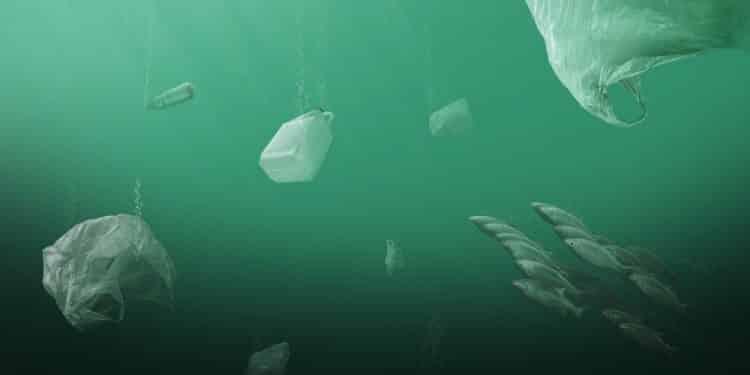 Mikroplastik w Bałtyku. Żyje na nim 50 razy więcej toksycznych mikroorganizmów niż w nieskażonej wodzie