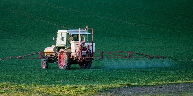 pestycydy w jedzeniu