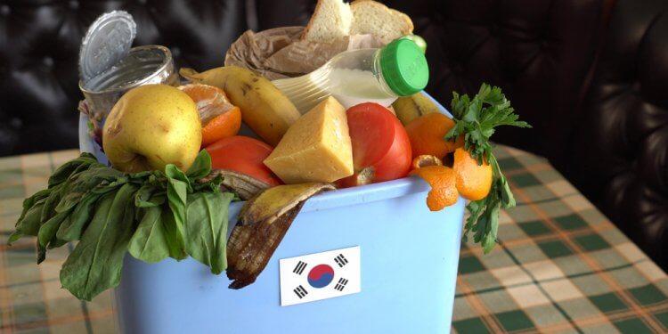korea resztki z żywności recykling