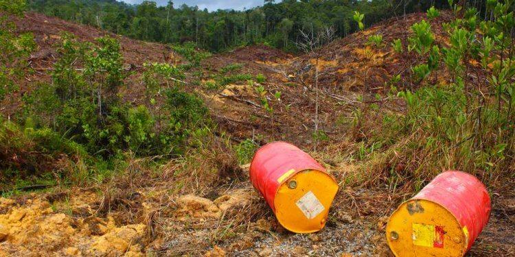 Bomby ekologiczne wciąż niebezpieczne. NIK sprawdziła jak z zanieczyszczeniem gleb radzi sobie państwo