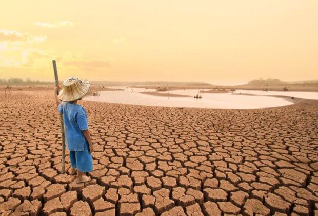 Najważniejszy zespół naukowców klimatycznych marnujemy 1 4 jedna czwarta żywności, degradacja gleb zagraża planecie