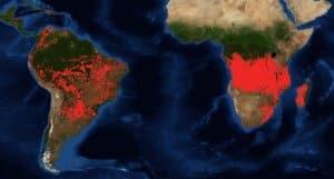 Południowa Afryka w ogniu. Nie tylko Amazonia i Arktyka płoną NASA pożar Afryka pożary Afryka