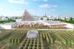 Ogród Warzywny na Dachu