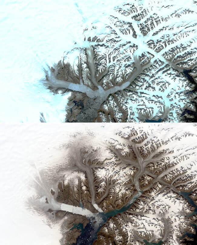 Lodowce Grenlandii znikają. NASA pokazało, jak zmieniły się w ostatnich 50 latach ZDJĘCIA 1 i 2