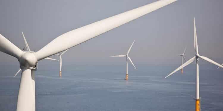 Farma wiatrowa zasili 2,6 mln brytyjskich domostw. Morska inwestycja zaspokoi 1 20 jedną dwydziestą 5 proc procent kraju