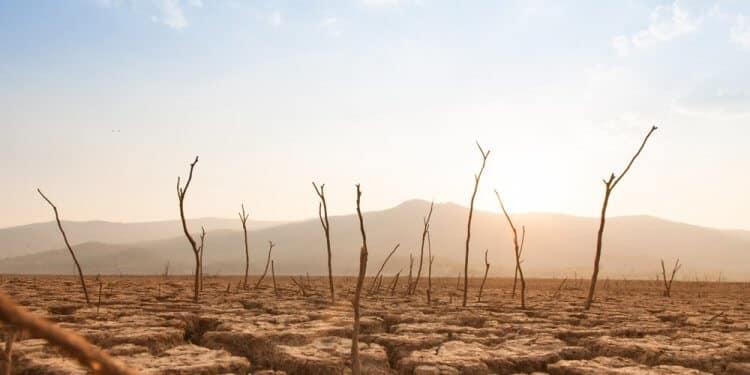 Naukowcy Na zdrowiu dzisiejszych dzieci piętno odcisną zmiany klimatu, ale i zanieczyszczenia powietrza