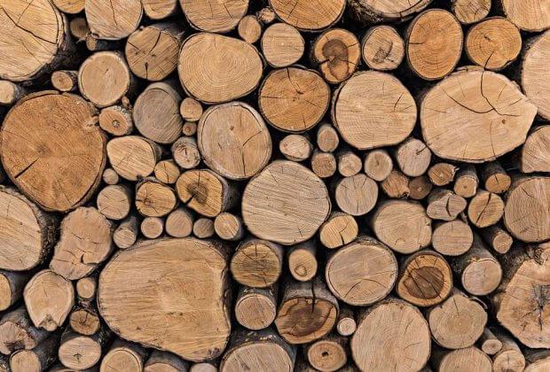 Naukowcy apelują o zrównoważone wykorzystanie biomasy leśnej w produkcji energii