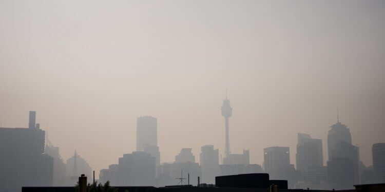 pożary sydney niebo dym