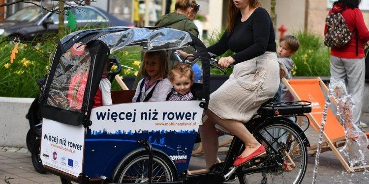 rower cargo gdynia