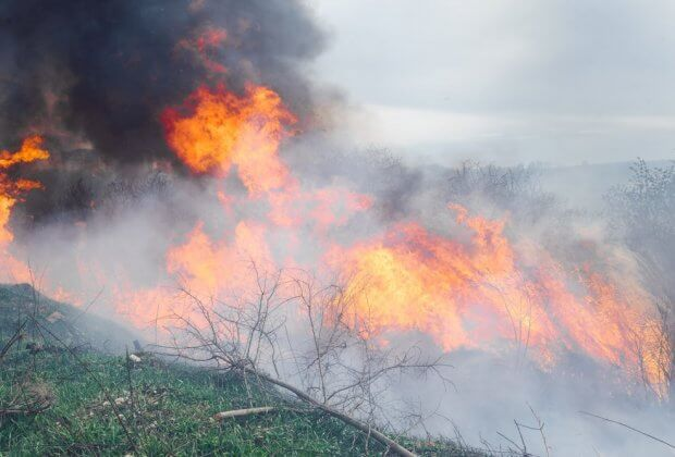 pożary arktyka