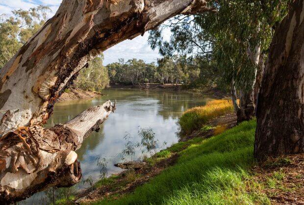 Park narodowy australia