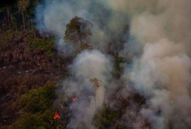 Amazonia pożar