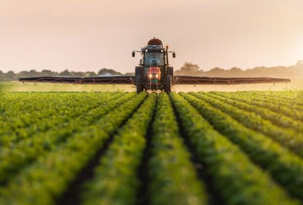 Pestycydy szkodliwość