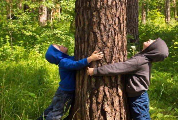 dzieci inteligencja zieleń