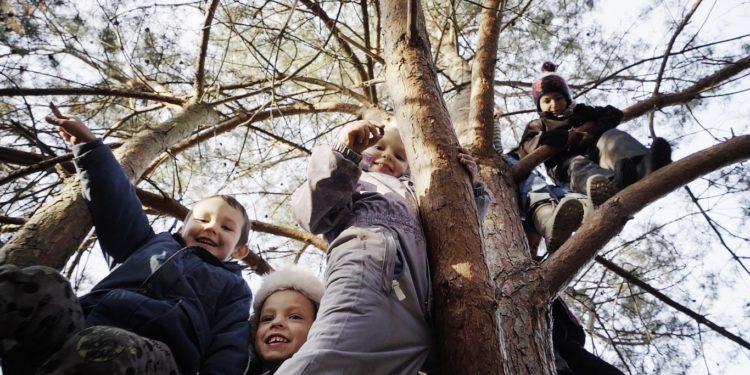 Leśne przedszkole