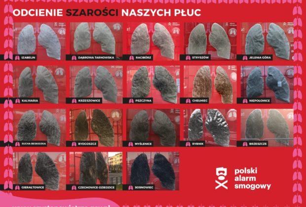 Sztuczne Płuca Polski Alarm Smogowy