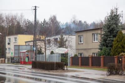 Domy jednorodzinne w Polsce