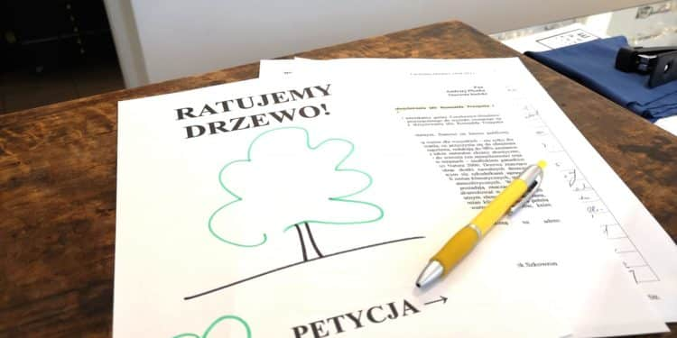 drzewo petycja czechowice dziedzice