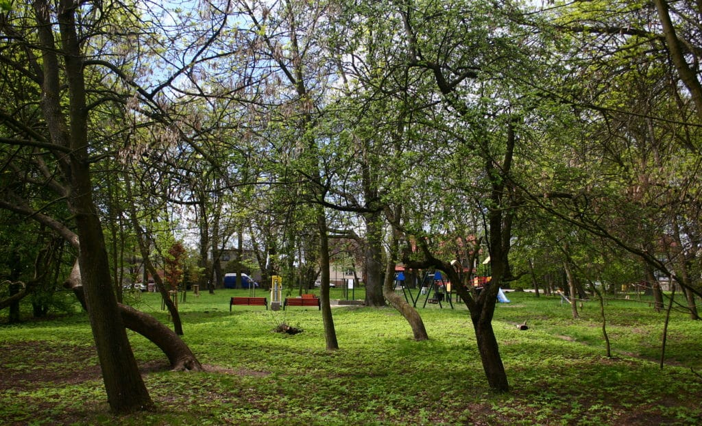Plac zabaw i siłownia w Częstochowie przy ul. Zagłoby. Fot. Przykuta/Wikimedia Commons.