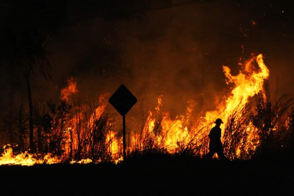 Czego ludzie boją się najbardziej? Od kilku lat na liście największych zagrożeń ludzkości dominuje kryzys klimatyczny i jego skutki. Na zdjęciu widać pożar lasu w Australii. Fot. VanderWolf Images/Shutterstock.