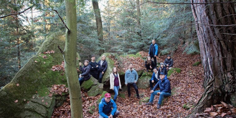 wspólny las wytrzyszczka