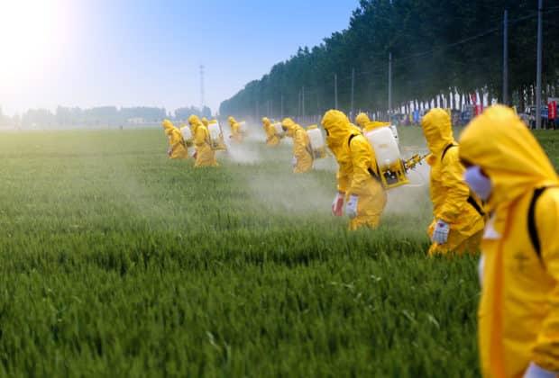 Pestycydy, glifosat