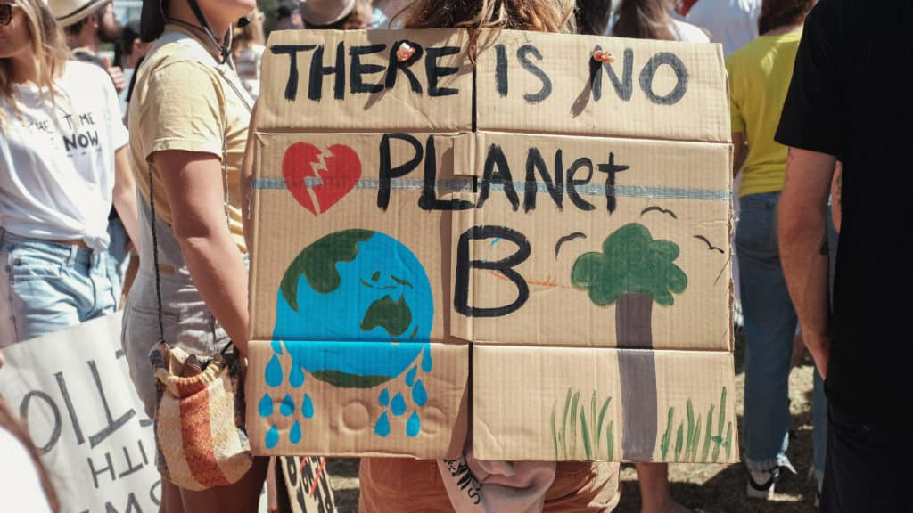 """""""Nie ma Planety B"""" to hasło, które Młodzieżowy Strajk Klimatyczny często wykorzystuje. Fot. SewCream / Shutterstock.com."""