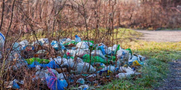 dyrektywa plastikowa