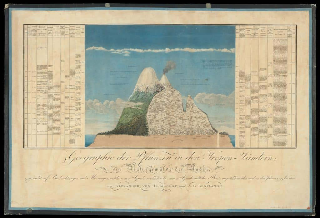 Ekologia? himborazo i Cotopaxi. Grafika przygotowana przez Alexandra von Humboldta i Aime Bonplanda. Domena publiczna.