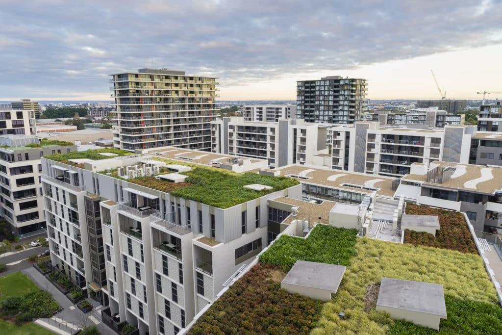 jedyne narzędzie, po które sięga Sydney, by zmniejszyć temperaturę w mieście. Na niektórych pojawiają się też rośliny. Fot. Sunflowerey/Shutterstock.